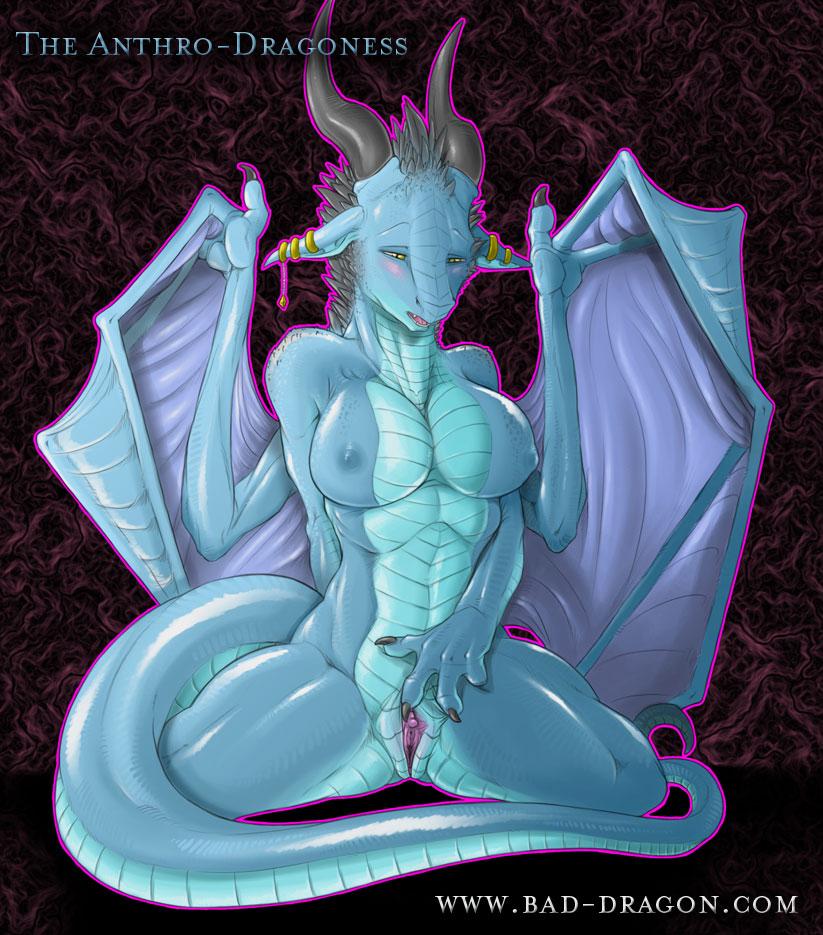 dragon-tactics-memories Fullmetal alchemist brotherhood dog girl