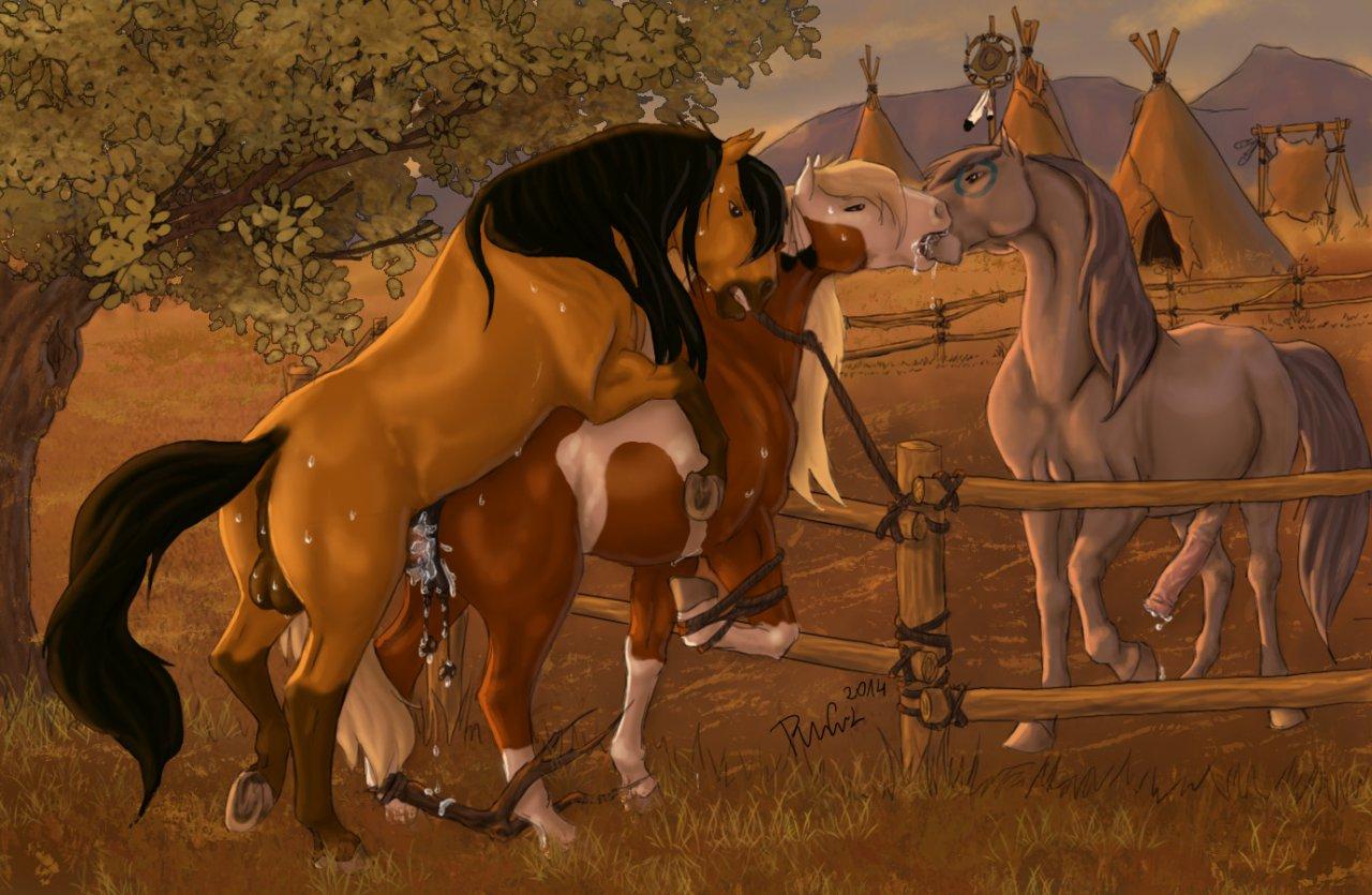 the stallion esperanza cimarron of spirit Boy x boy x boy